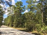 6.32 Acre Home Site For Sale in Ki : Kingsland : Camden County : Georgia