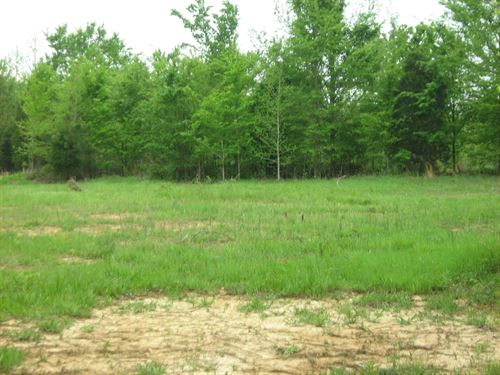 Vacant Land, Benton County Tn : Holladay : Benton County : Tennessee