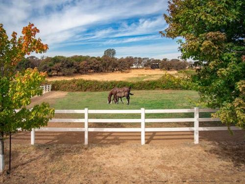 Pristine Training Horse Ranch Grass : Grass Valley : Nevada County : California