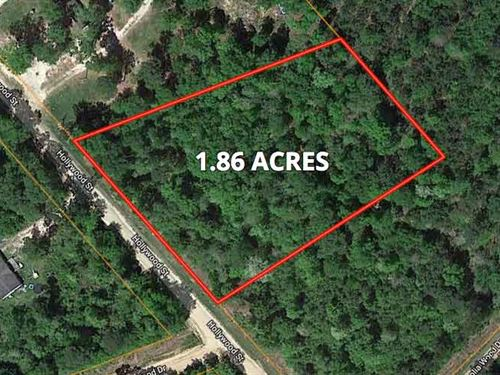 Beautiful Unrestricted Acreage : Livingston : Polk County : Texas