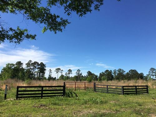 19.8 Ac Rustic Star T-4 : Midway : Walker County : Texas