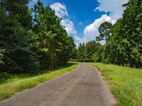 Wooded Lot With Water & Electricity : Cleveland : Liberty County : Texas