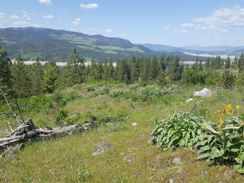 Acreage Lot, Lake Roosevelt, Build : Fruitland : Stevens County : Washington