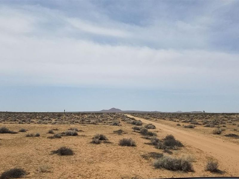 Southern California Seasonal Stream : Helendale : San Bernardino County : California