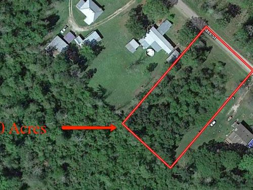Quaint Un-Restricted 1 Acre Lot : Livingston : Polk County : Texas