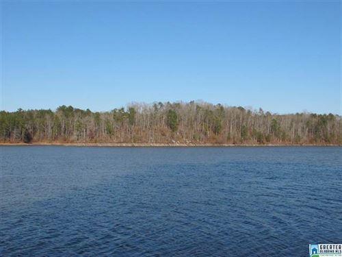 Flat Point Lot On Lake Wedowee : Wedowee : Randolph County : Alabama