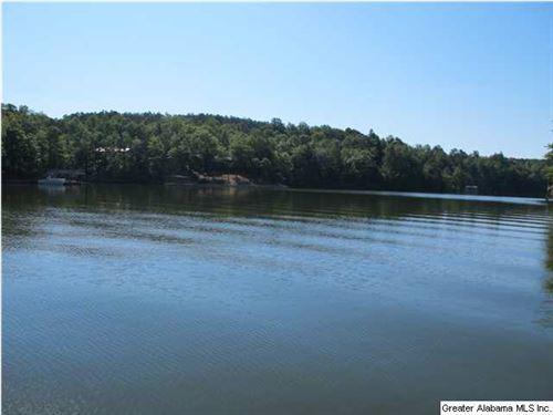 Premiere Flat Lot On Lake Wedowee : Wedowee : Randolph County : Alabama