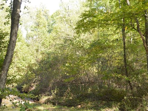 Nice Building Lot Creek Frontage : Sparta : Alleghany County : North Carolina