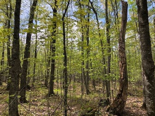 6155 Co Rd 457 Newberry Mls 1110600 : Newberry : Luce County : Michigan