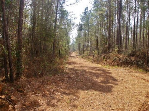 9.5 Acres Home Site / Weekend Get : Magnolia : Amite County : Mississippi