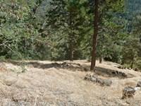 San Bernardino Mountain Lot : Cedarpines Park : San Bernardino County : California