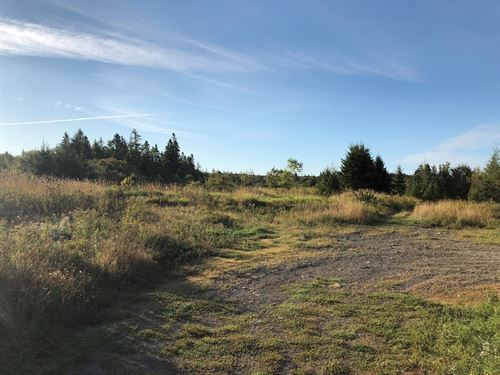 Land For Sale In Downeast, Maine : Lubec : Washington County : Maine