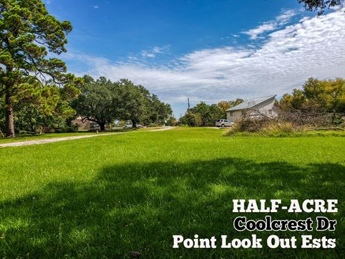 .56 Acres In San Jacinto County : Point Blank : San Jacinto County : Texas