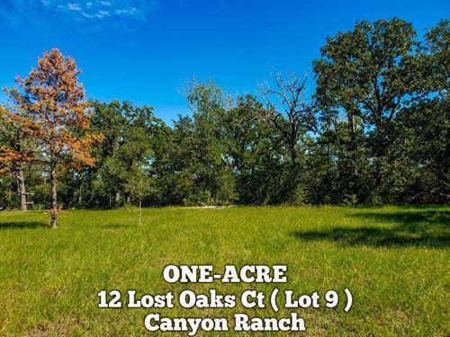 1 Acre In Walker County : Huntsville : Walker County : Texas