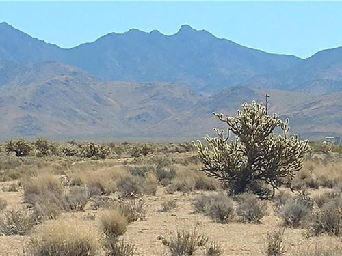 Nice Flat Lot Great Views Just Off : Dolan Springs : Mohave County : Arizona