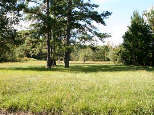 1.24 Acres- Ratliff Rd : Callahan : Nassau County : Florida