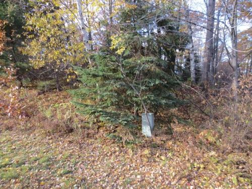4.57 Acre Parcel : Newbold : Oneida County : Wisconsin
