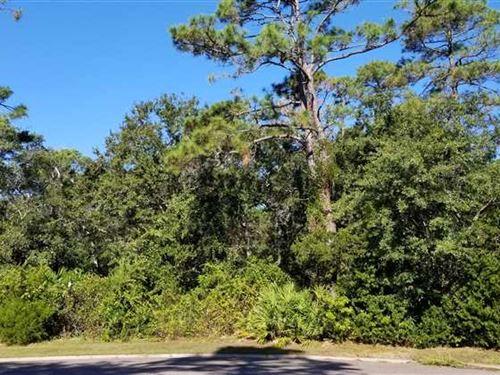 Overlook Lane : Saint Marys : Camden County : Georgia