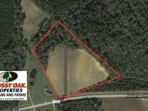 Under Contract, 10 Acres of Farm : Clarkton : Columbus County : North Carolina