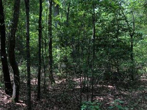 Beautiful Wooded Property : Saint Matthews : Calhoun County : South Carolina