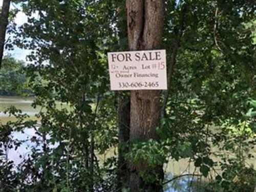 Beautiful 12 Acres : Saint Matthews : Calhoun County : South Carolina