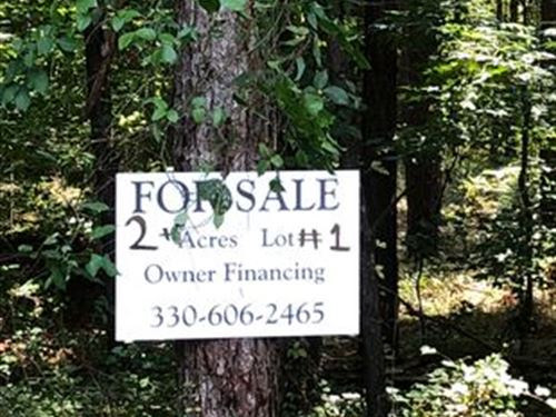 Beautiful Potential Homesite : Saint Matthews : Calhoun County : South Carolina