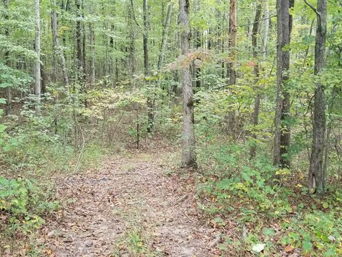 3.06+/-Acres Nice Wooded Tract : South Pittsburg : Marion County : Tennessee