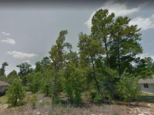 Citrus County, Fl $36,000 : Sugarmill Woods : Citrus County : Florida