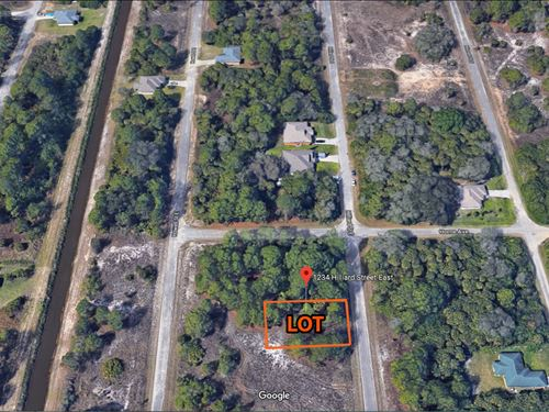 Beautiful 1/4 Acre In Sw Florida : Lehigh Acres : Lee County : Florida