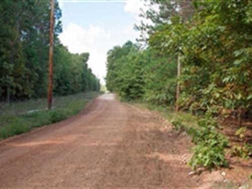 Missouri, Dent County : Lenox : Dent County : Missouri
