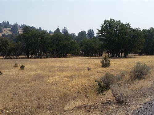 Recreational/Agricultural Land : Montague : Siskiyou County : California