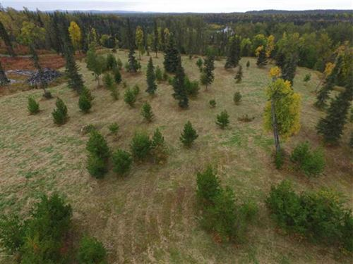 5 Acres of Privacy For Hunting And : Ninilchik : Kenai Peninsula Borough : Alaska