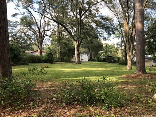 .81 Acre Lot E, High Avenue Geneva : Geneva : Alabama