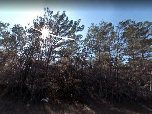 Lake County, Fl $65,000 : Eustis : Lake County : Florida