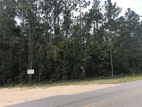 Private Lot With Road Frontage : Jesup : Wayne County : Georgia