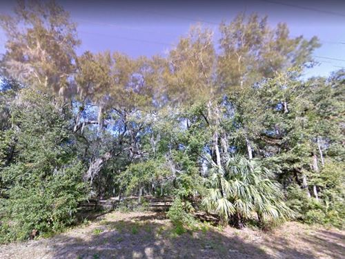 Marion County, Fl $24,500 : Citra : Marion County : Florida