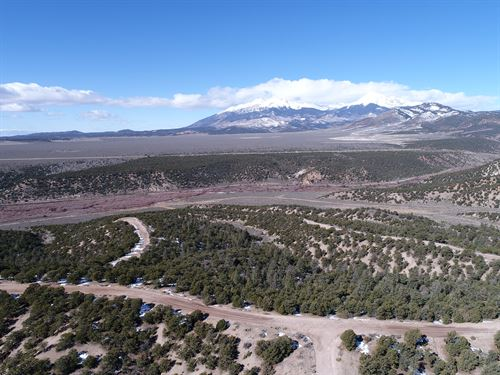 Find Your Freedom On 5Ac Of Co Land : Fort Garland : Costilla County : Colorado