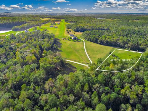 4.84 Acres In Equestrian / Airstrip : Newborn : Morgan County : Georgia