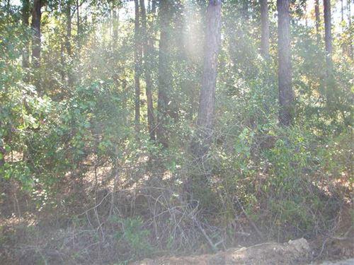 Lots 2 & 3 White Oak Drive on The : Eufaula : Barbour County : Alabama