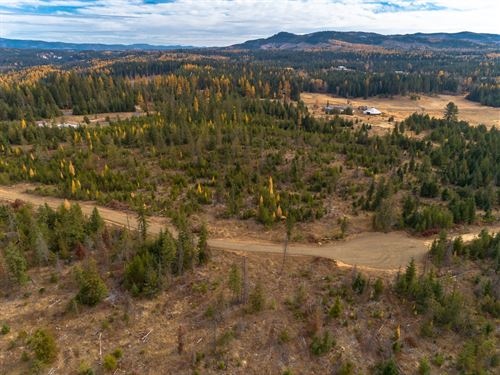 Idaho Rural Residential Acreage : Saint Maries : Benewah County : Idaho