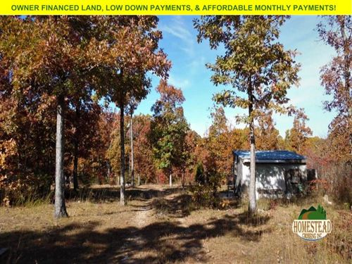 Homestead Property With Small Cabin : Cabool : Texas County : Missouri