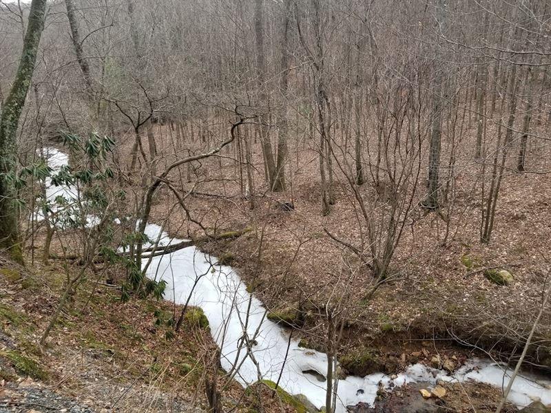 Grandfather Mountain Paradise : Banner Elk : Avery County : North Carolina