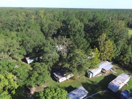 Great RV Park National Forest 100 : Bristol : Liberty County : Florida