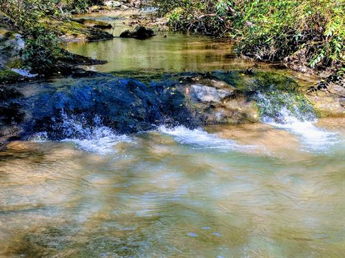 500 Ft Of Trout Stream 6.5 Acres : Sparta : Alleghany County : North Carolina