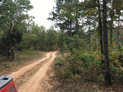 10 Acres Near Conservation Land : Eminence : Shannon County : Missouri
