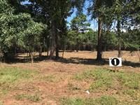 Small Acreage Home Sites : Jackson : Butts County : Georgia