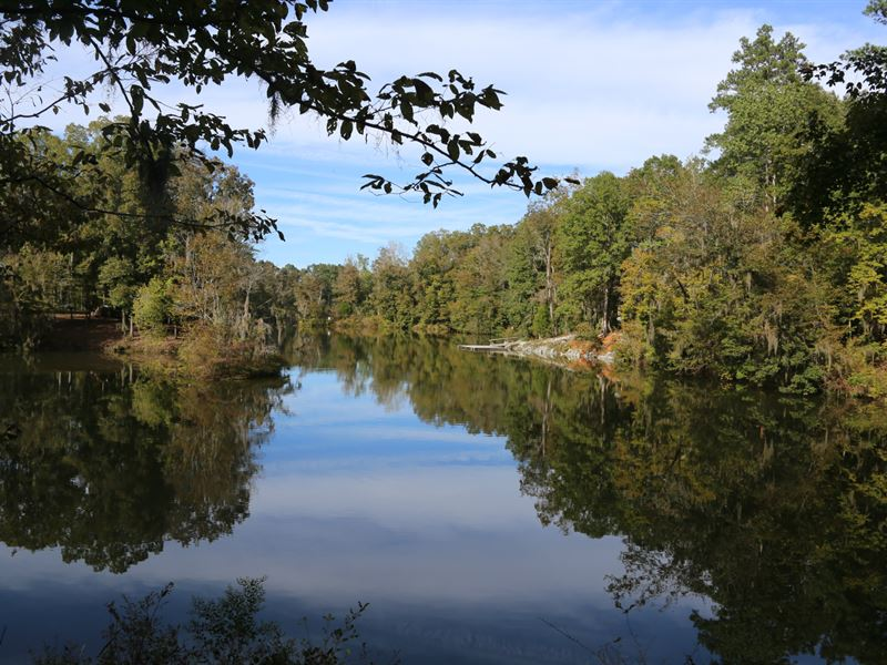 Lot 38 Red Eagle Drive : Lowndesboro : Lowndes County : Alabama