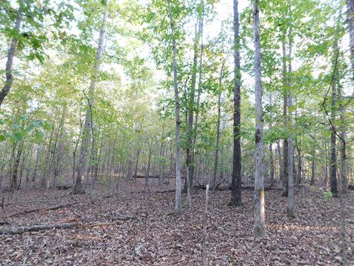 Land Tn Fishing Utilities Available : Adamsville : Hardin County : Tennessee