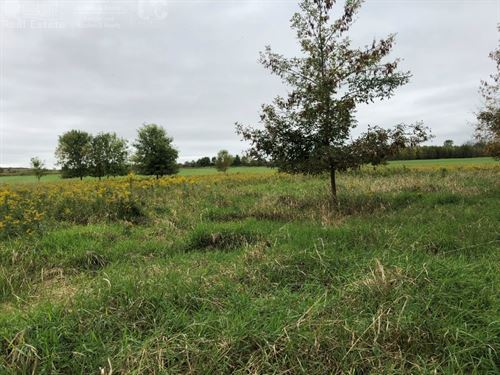 Secluded Buildable Acreage Ozaukee : Belgium : Ozaukee County : Wisconsin