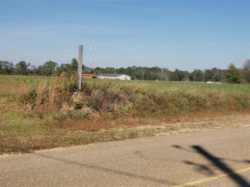 4 Acres Hartzog Rd, Wicksburg : Wicksburg : Houston County : Alabama